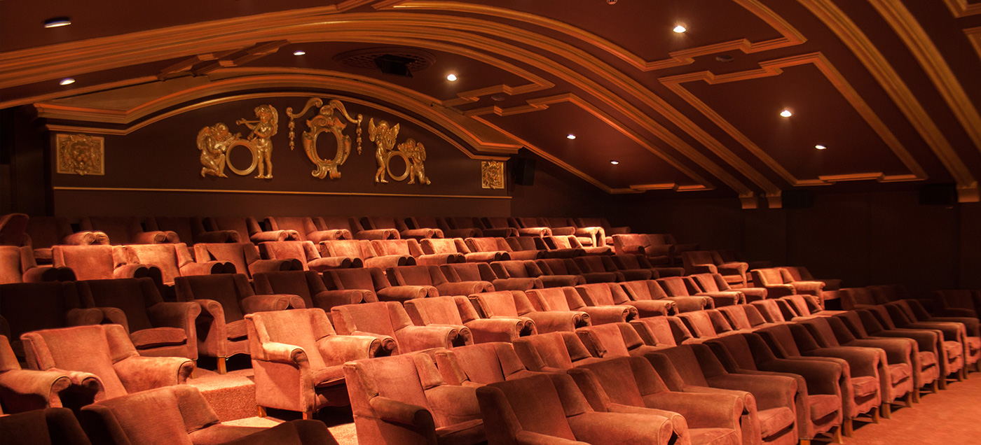 This is a photograph of The Castle Cinema showing rows of empty seats in the auditorium.
